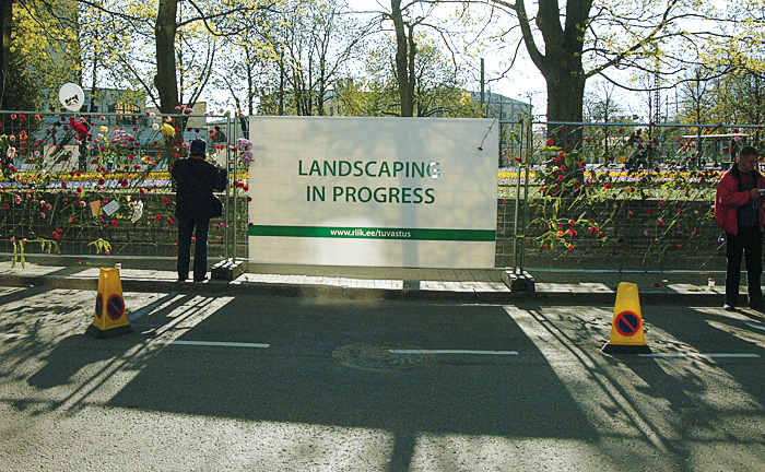landscapinginprogress